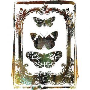 Redesign transfer Butterfly Frame